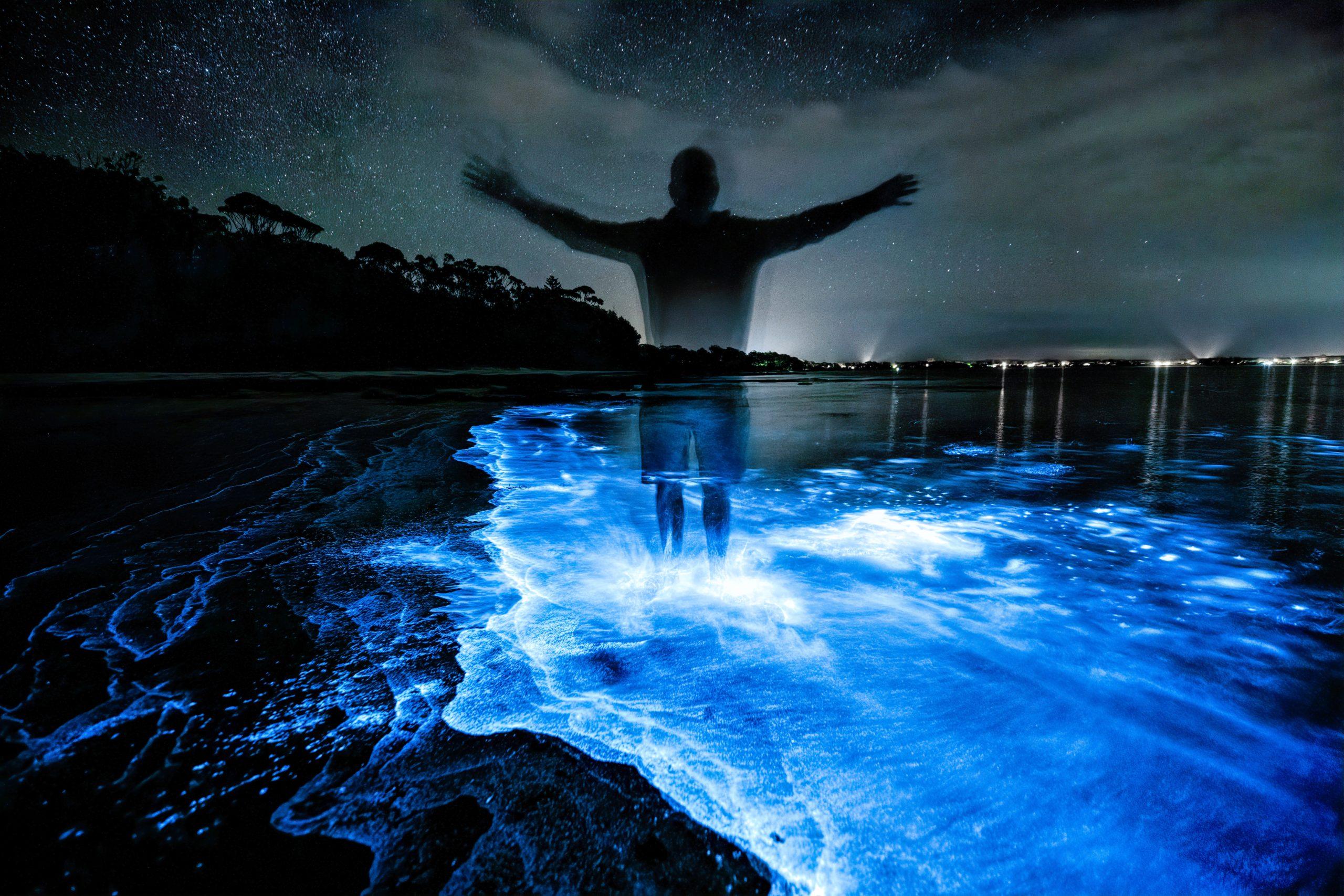 Bioluminescence Kayaking